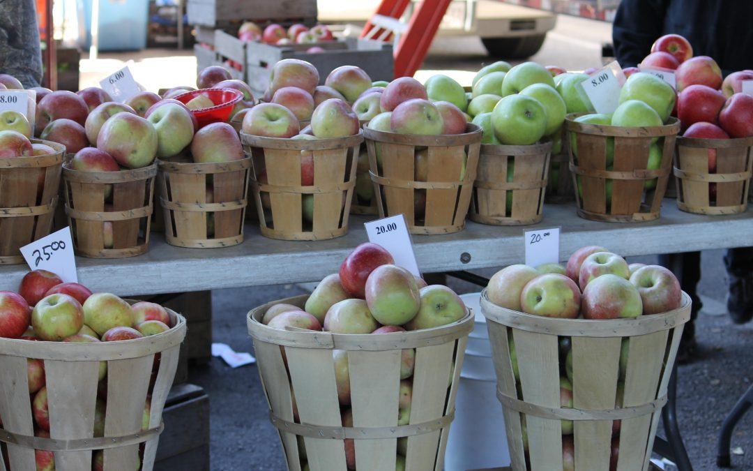 Insider's Guide to Maryland Farmer's Markets: Fall Edition