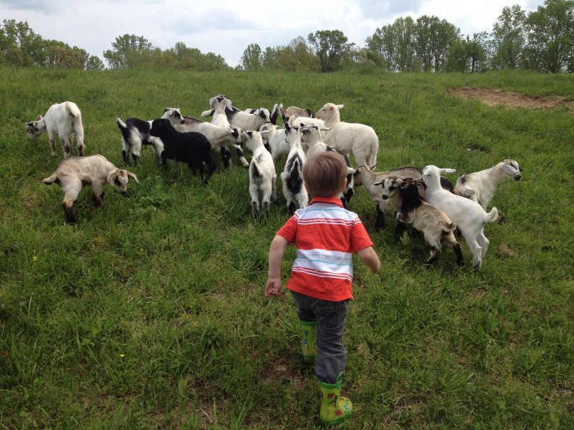 Young Farming Family Keeps Agricultural Tradition Alive in Southern Maryland