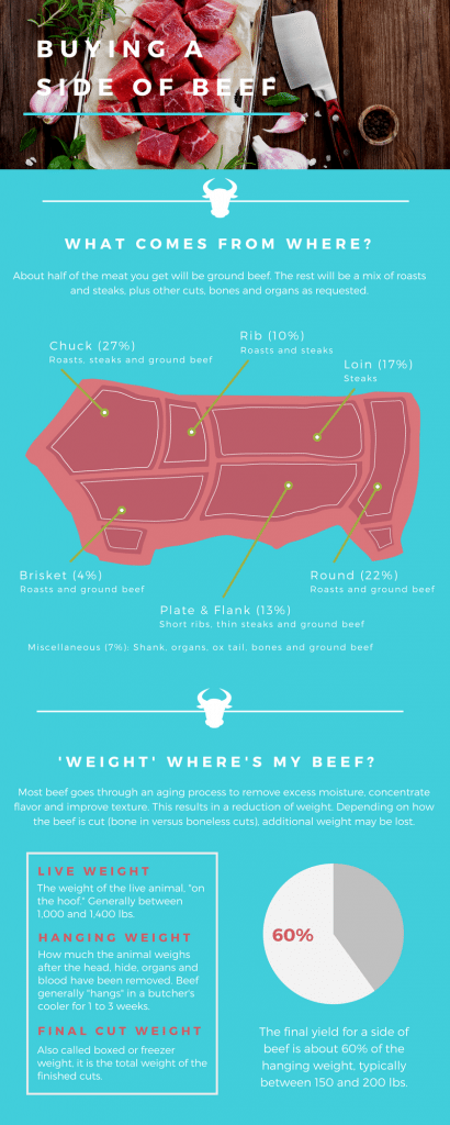 Side of beef infographic